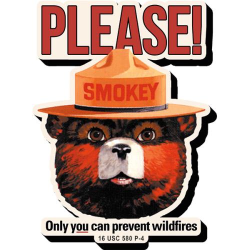 SMOKEY BEAR MAGNETS